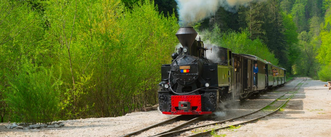 Treno Mocanita